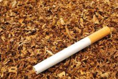 Papierosy i tytoń bez akcyzy ujawnili policjanci z Posterunku w Glinojecku.