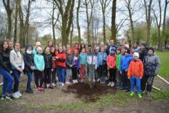 Dzień Ziemi: miejska akcja sadzenia drzew