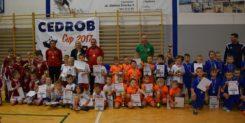 Cedrob Cup 2017