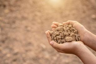 Rusza nabór wniosków na wsparcie systemu suszy rolniczej