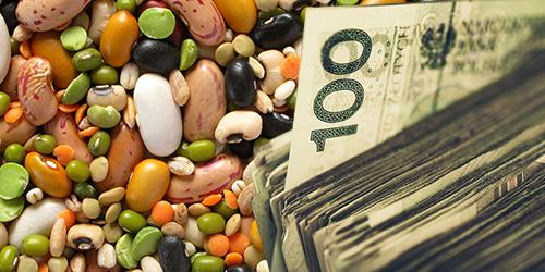 Dopłaty do materiału siewnego płyną na konta rolników